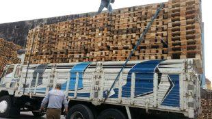 Sanayi Sektörünün Vazgeçilmez Parçası: Paletler